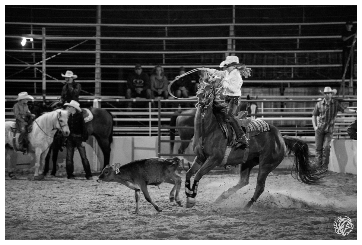 2017 Denton County Youth Fair And Rodeo Denton Tx Los