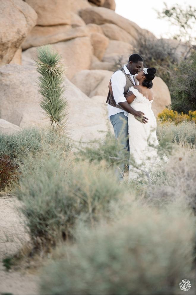 Shanun & James - Yana's Photos - Los Angeles Joshua Tree Wedding Photographer - DSC_9180.jpg