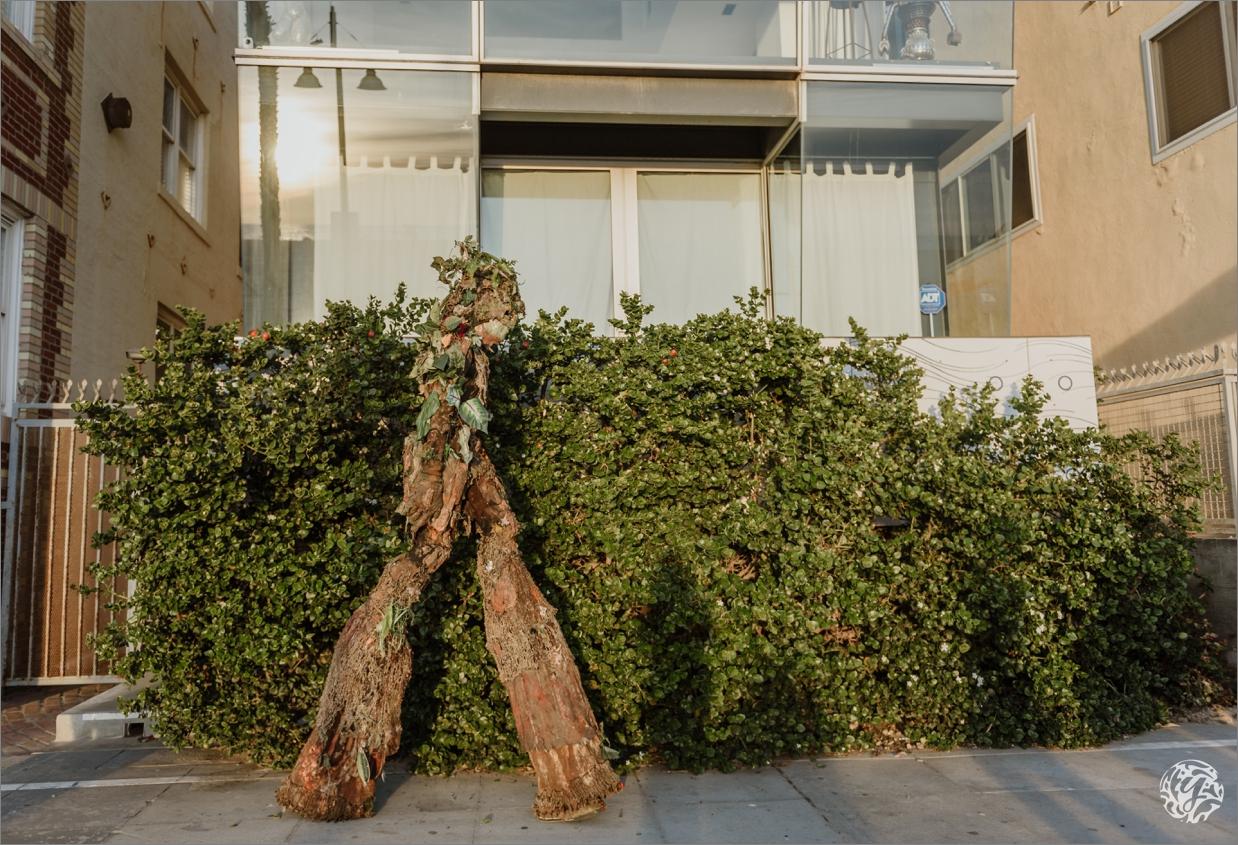 Yana's Photos - Venice Beach Photography2 - tree man.jpg
