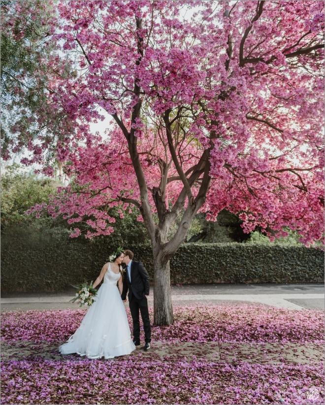 copy smaller Los Angeles Wedding Photographer - Yana's Photos - Los Angeles Arboretum Wedding -DSC_9044.jpg